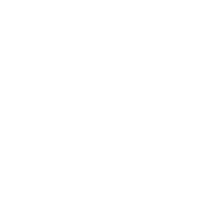 Elegant Gaming Experience logo - video game and laser tag parties in Pennsylvania